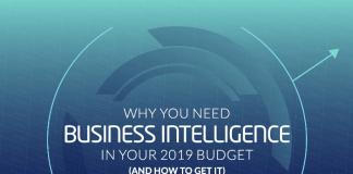 TechProspect-Budget_Business_Intelligence_eBook