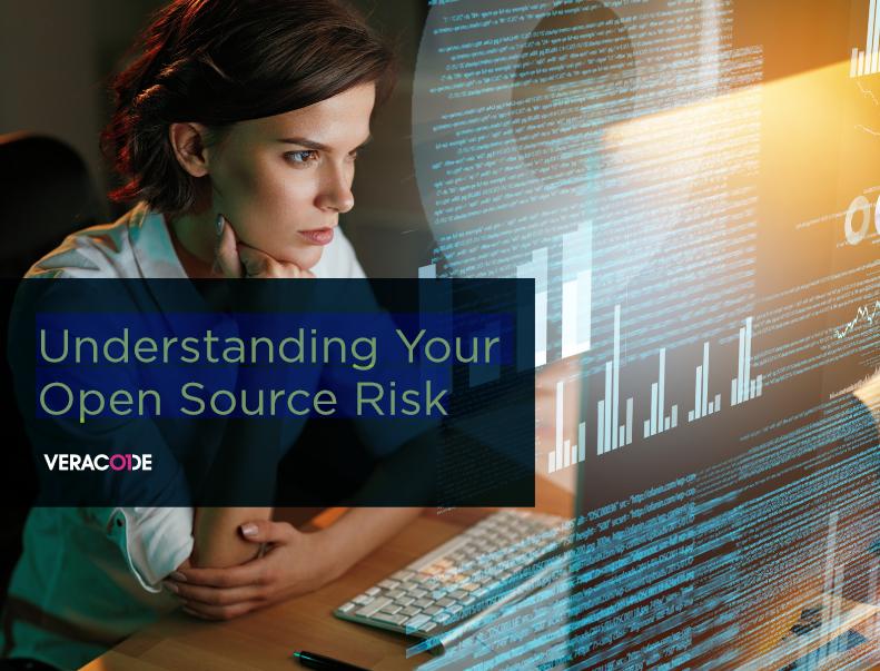 TechProspect-Understanding_Your_Open_Source_Risk