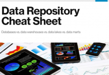 Defining and Using Master Data Management -TechProspect
